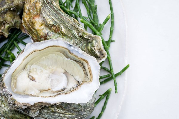 Six Oysters and Glass of Cuvee Champagne for Two at Searcys at The Gherkin