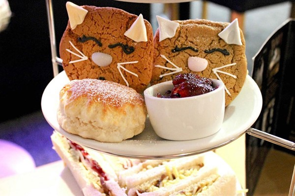 Afternoon Tea with Bottomless Prosecco at Whiskers and Cream