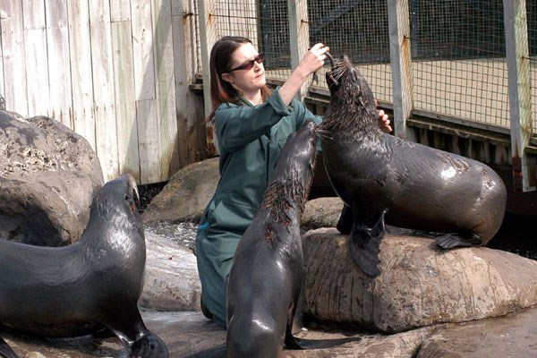 Zookeeper for a Day at Bristol Zoo with Entry for Two, Lunch and Souvenir