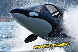 30 Minute Seabreacher Watercraft Experience for Two