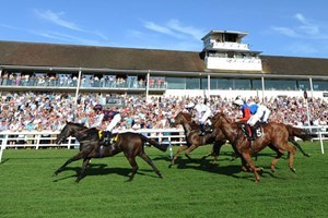 Click to view details and reviews for Winning Raceday Package For One.