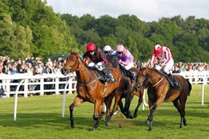 Click to view details and reviews for 2 For 1 Winning Raceday Package Special Offer.