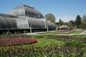 image of Family Visit to Kew Gardens and Palace for Two Adults and Two Children
