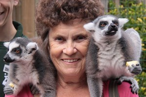 Click to view details and reviews for Meet The Lemurs Experience.