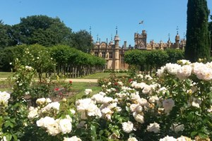 Click to view details and reviews for Entry To Knebworth House For Two.