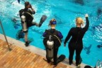 Scuba Diving Experience for One in Essex