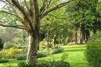 Family Entry to Cae Hir Gardens - Kids Go Free