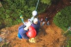 Adult High Ropes Adventure Experience in Norfolk