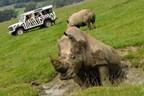 VIP Safari Tour at Longleat Safari Park (Adult and Child)