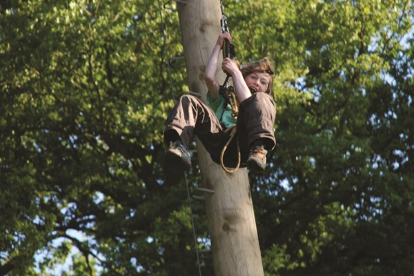 Adult High Ropes Adventure, Norfolk