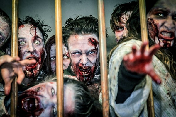 Zombie Battle Training Experience In London