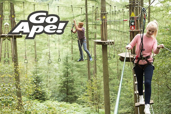 Tree Top Adventure for Two Adults at Go Ape