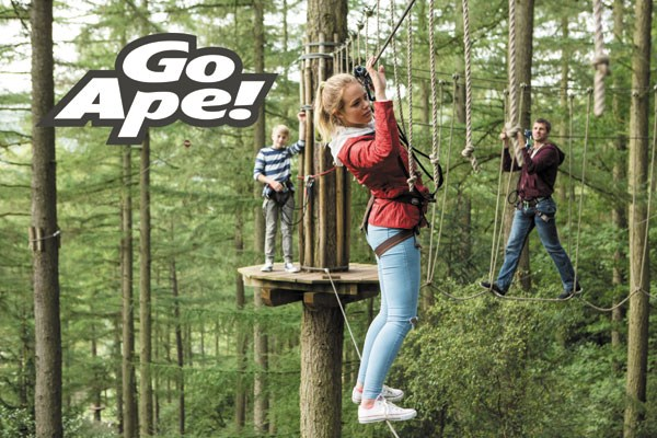 Tree Top Adventure for One Adult and Two Children at Go Ape