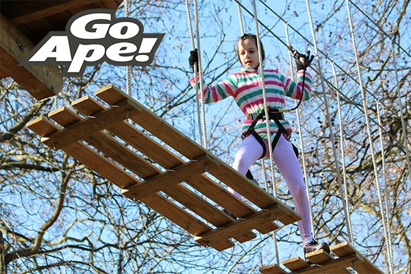 Tree Top Adventure for One Child at Go Ape