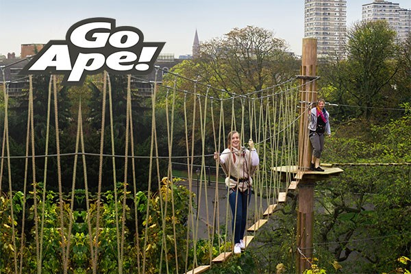 Tree Top Challenge in London for One at Go Ape