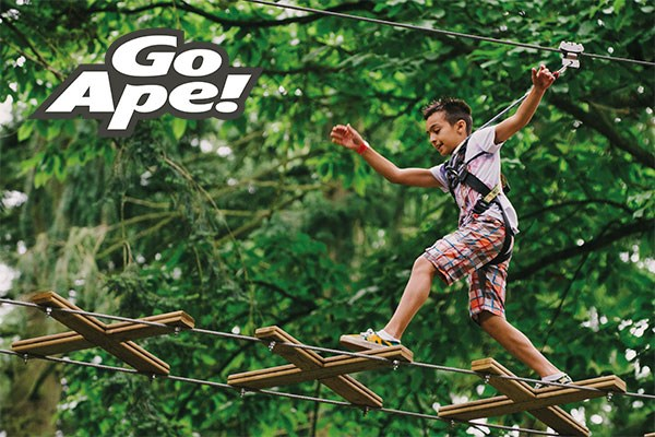 Tree Top Junior Adventure for One at Go Ape