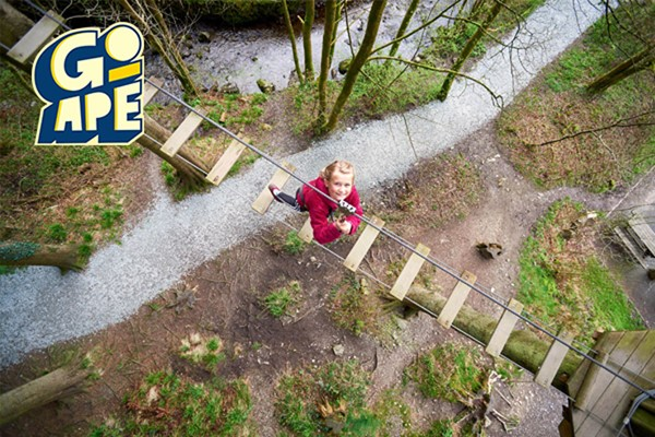 Junior Tree Top Adventure For One At Go Ape From Buyagift