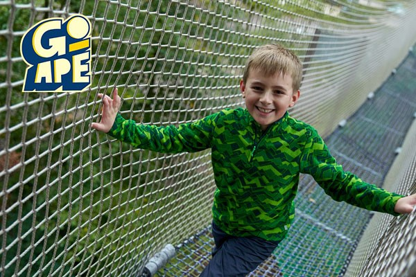 Nets Kingdom Experience for One at Go Ape