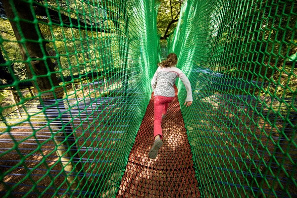 Treetop Nets for One at Treetop Trek