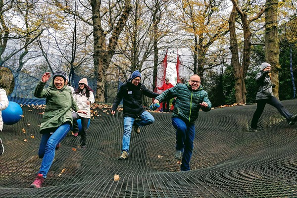 Zip Trek and Treetop Nets for One at Treetop Trek