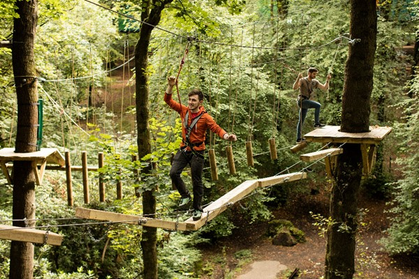 Zip Trek for Two at Treetop Trek