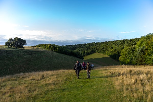 Ramble in The South Downs with a Cream Tea for Two