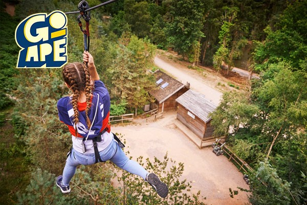 Tree Top Challenge For One Adult At Go Ape From Buyagift