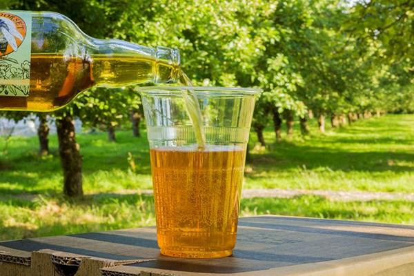 2 For 1 Cider Tasting For Two At Dorset Nectar