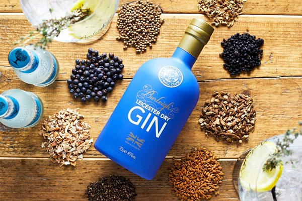 Buy Gin Masterclass for Two at 45 Gin School