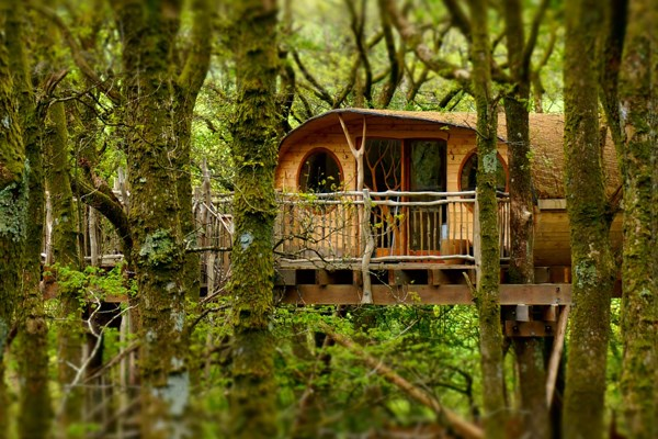 Two Night Treehouse Escape for Two