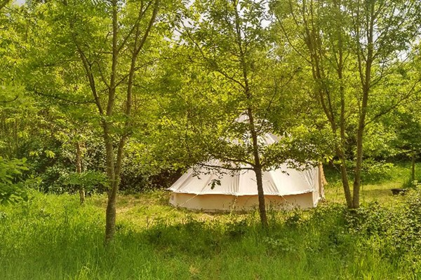 One Night Glamping in Bell or Yurt with Hot Tub and Fizz at Woodland Escape