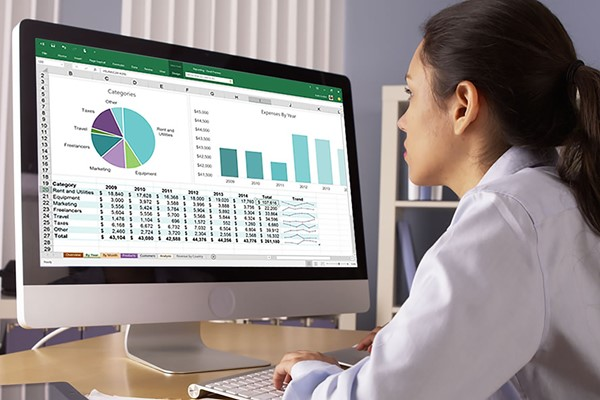 Microsoft Excel for Beginners Online Course for One