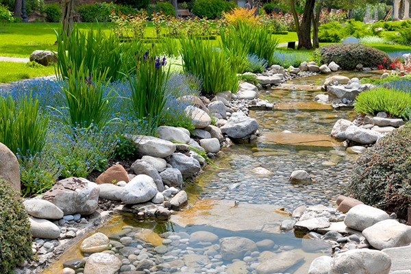 Online Zen Gardening Course for One