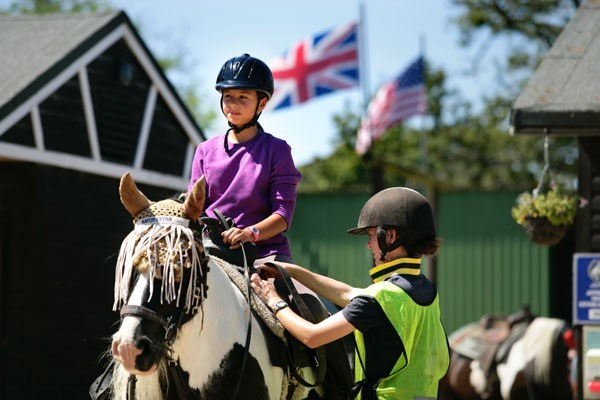 Two Hour New Forest Horse Riding Experience for Two