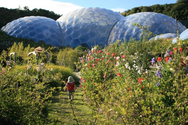 Chocolate Flavoured Rainforest Private Tour for Two at The Eden Project