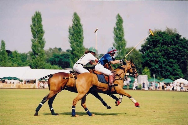 Discover Polo Experience at Westcroft Park