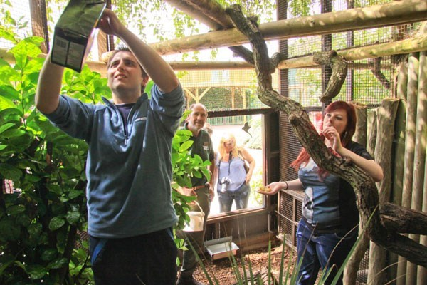 Shadow a Zookeeper Experience for Two at Paradise Wildlife Park