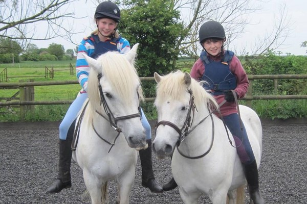 Pony Day at Willow Farm