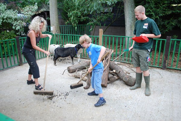 Zookeeper Experience at Paradise Wildlife Park for One Adult and One Child