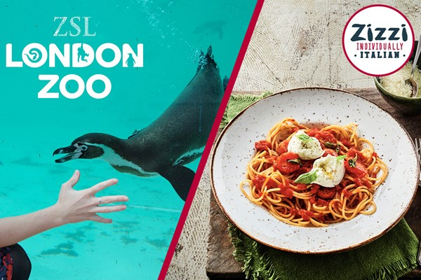 ZSL London Zoo Entry and Three Course Meal for Two at Zizzi