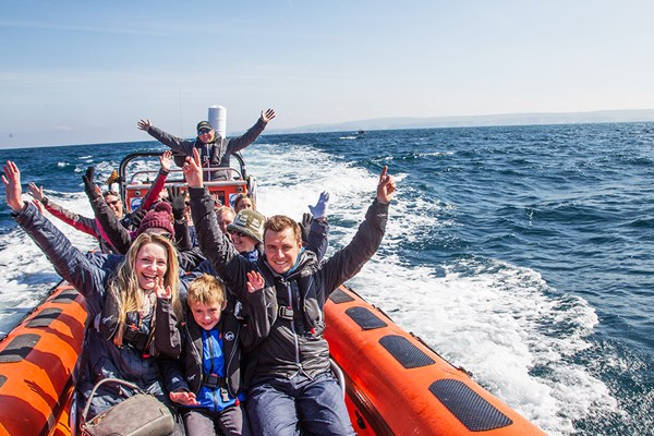 Families waving having fun on a Sealife Safari boat trip in Cornwall