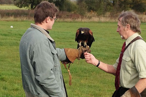 Three Hour Birds of Prey Day for Two