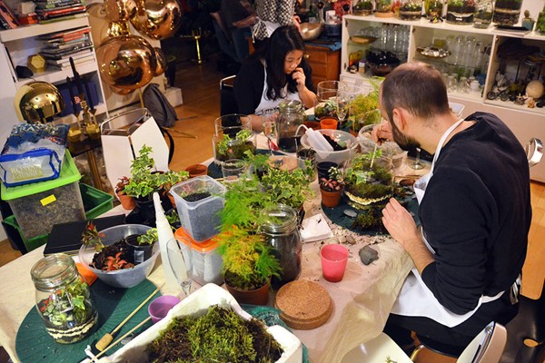 90 Minute Introductory Mini Ecosystem Workshop at Botanical Boys