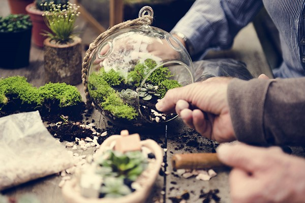 Terrarium Workshop for Two at Porto's Flowers