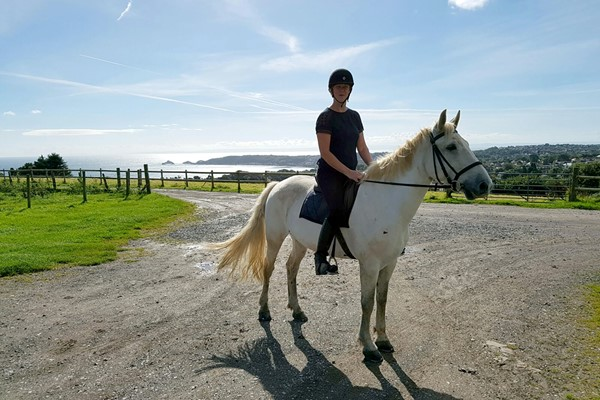 Horse-riding Lesson for One at Clyne Farm Centre