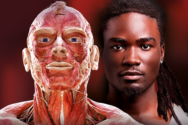 Body Worlds Museum Experience for Two Adults