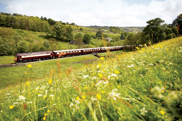 Full Day Excursion with Brunch and Bellinis for One on the Northern Belle