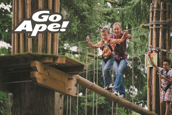 Tree Top Adventure for One Adult and One Child at Go Ape