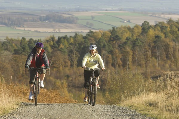 Mountain Biking for Two at Gorsebank