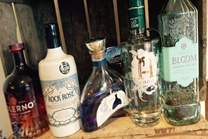 Buy Gin Master Class for Two at Liquor and All Sorts